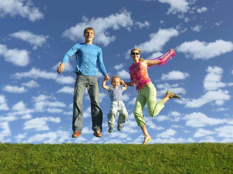 Glückliche Familie der Fliege lizenzfreie stockbilder
