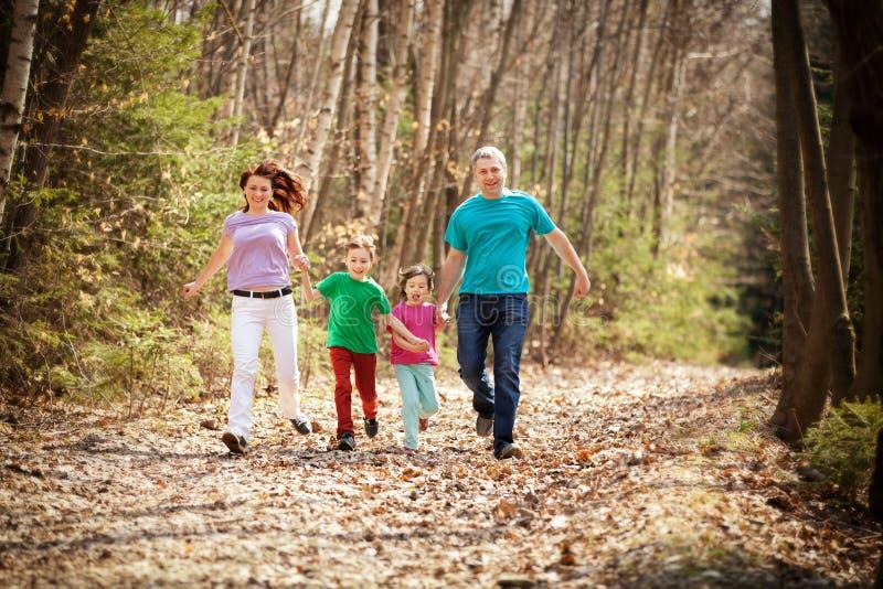Glückliche Familie, die in das Holz läuft lizenzfreie stockfotografie