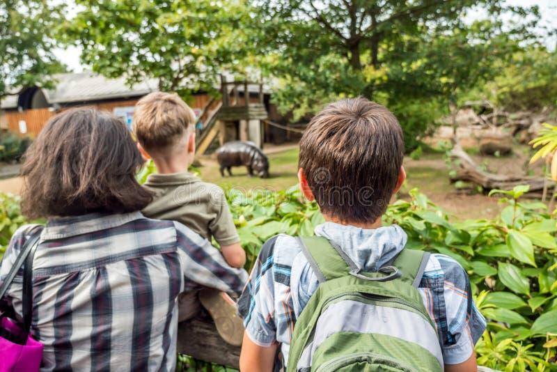 Glückliche Familie, die Flusspferd auf den Zoo betrachtet stockbild