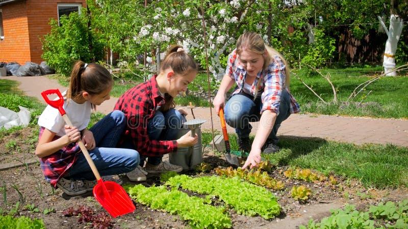 Glückliche Familie, die im Garten am sonnigen Tag arbeitet lizenzfreie stockfotos