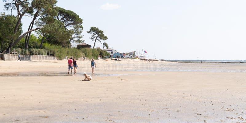 Glückliche Familie, die Spaß zusammen am Strand von Andernos in Frankreich in der Netzfahnenschablone hat stockfotografie