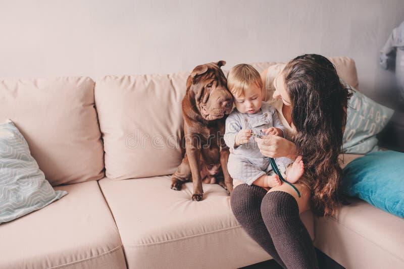 Glückliche Familie, die zu Hause mit Hund spielt Mutter und Baby, die Plätzchen essen stockfotos