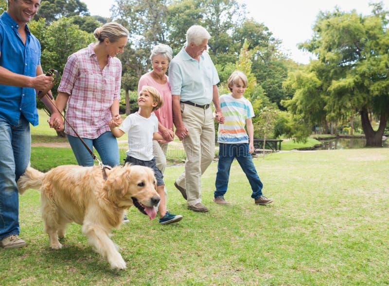 Glückliche Familie im Park mit ihrem Hund stockfotos
