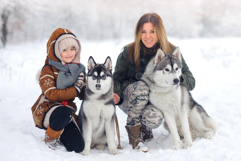 Glückliche Familie im Winterholz spielt Schlittenhunde mit einem Hund Schönes Schneeholz lizenzfreie stockbilder