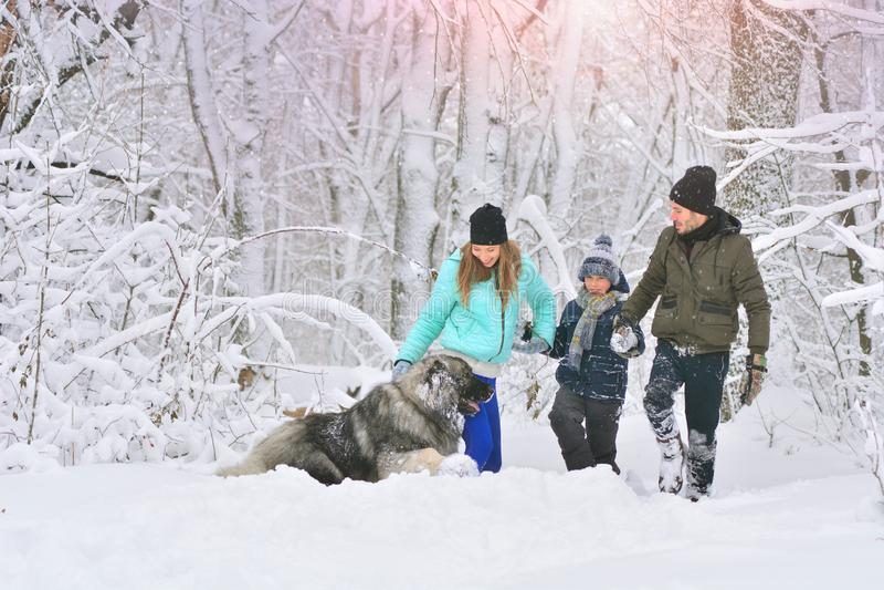 Glückliche Familie mit Hund draußen in einer Winterwaldmutter, in einem fother, in einem Sohn und in einem großen Schoßhund stockbilder