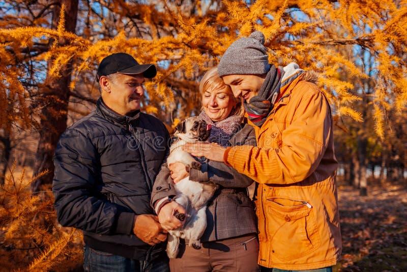 Glückliche Familienausgabenzeit mit Pughund im Herbstpark Eltern mit ihrem Sohn, der Haustier umarmt Familienwerte stockbilder