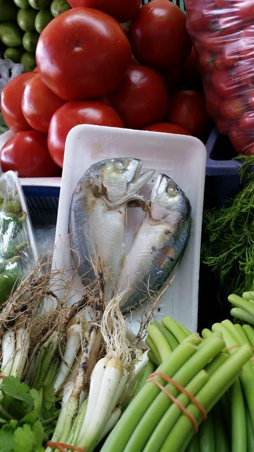 Glückliche Fische stockfoto