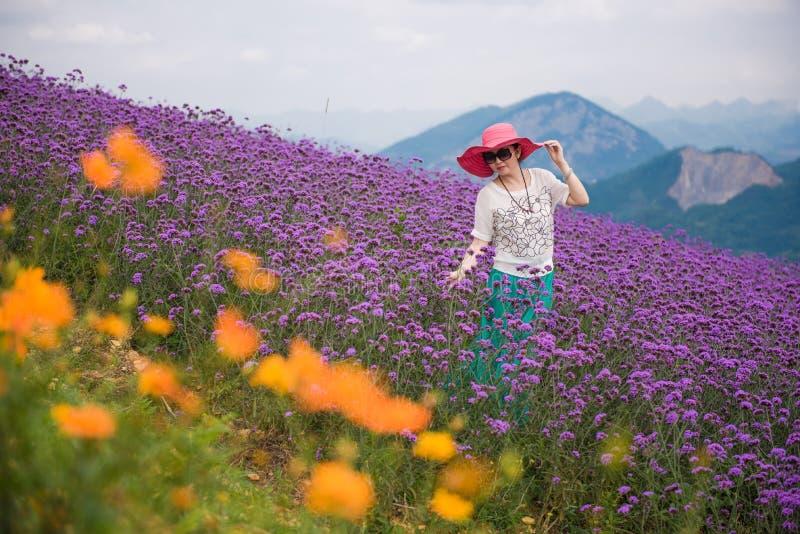Glückliche Frau auf dem Lavendelgebiet stockfotos