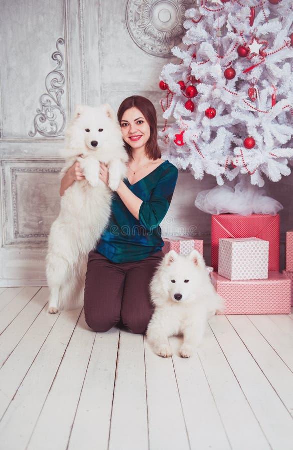 Glückliche Frau mit Samoyedhund in den Weihnachtsdekorationen stockbilder