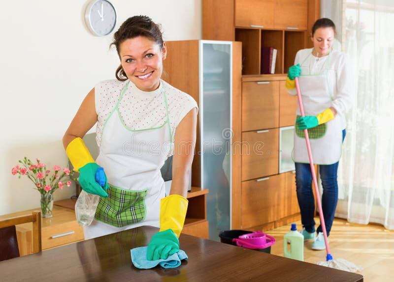 Glückliche Frauen stellen Reinigungsmöbel zusammen her lizenzfreie stockfotos