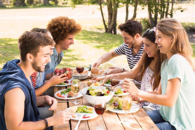 Glückliche Freunde im Park, der zu Mittag isst lizenzfreies stockbild