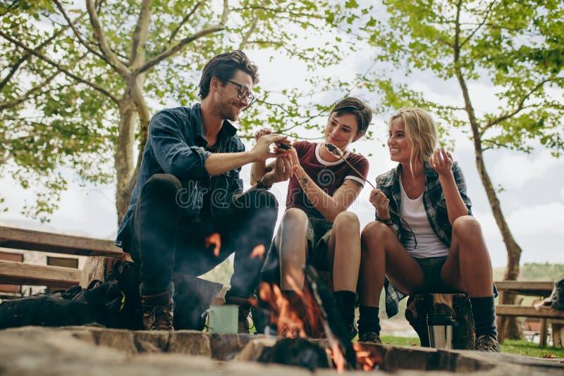 Glückliche Freunde im Urlaub, die in der Landschaft kampieren lizenzfreie stockbilder