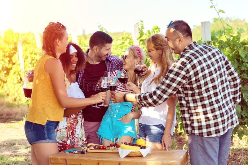 Glückliche gemischtrassige Freunde, die Spaß am Weinberg bei dem Sonnenuntergang trinkt Rotwein und isst Bauernhofnahrung haben stockfotografie