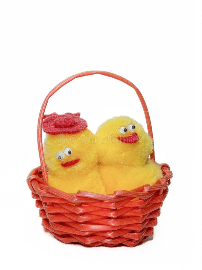 Glückliche Hühnerpaare lizenzfreies stockfoto
