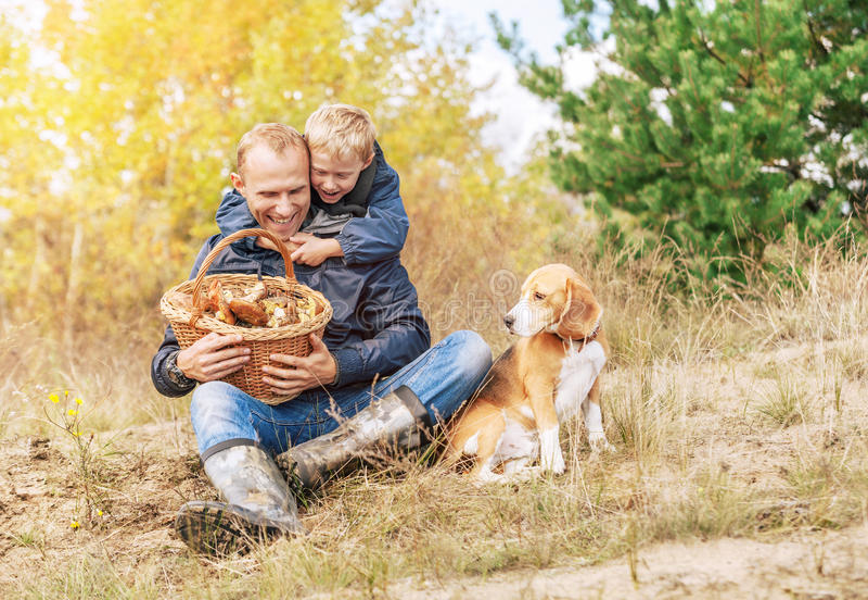 Glückliche Herbstfreizeit - Pilzsammeln stockfoto