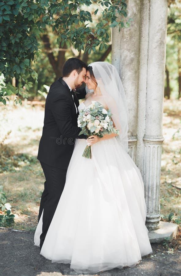 Glückliche Hochzeitspaarbraut und -bräutigam, die in einem botanischen Park aufwirft stockbild