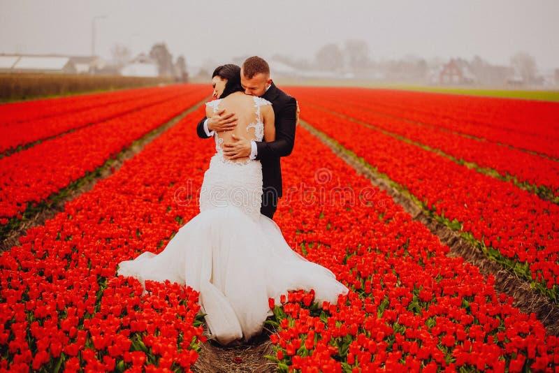 Glückliche Hochzeitspaare, die Frischluft auf einem bunten Gebiet mit roten Blumen atmen lizenzfreies stockfoto