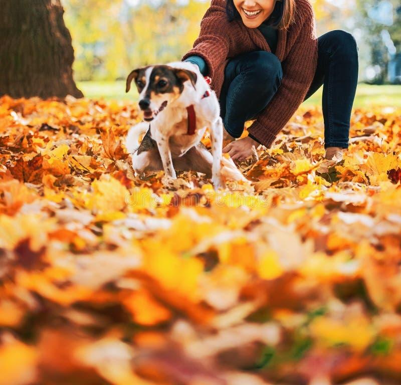 Glückliche junge Frau, die draußen Hund im Herbst hält lizenzfreie stockbilder