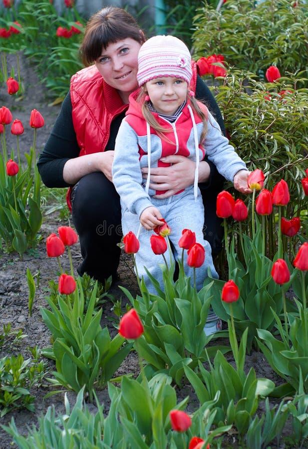 Glückliche junge Mutter mit dem Baby, das auf einem Gebiet von Tulpen spielt stockbild