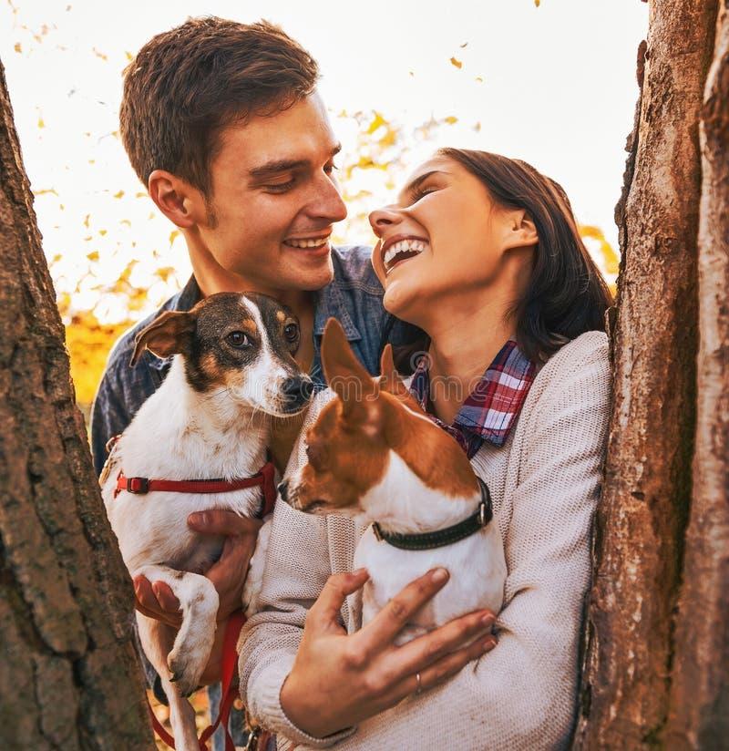 Glückliche junge Paare, die Hunde im Park halten stockfotos