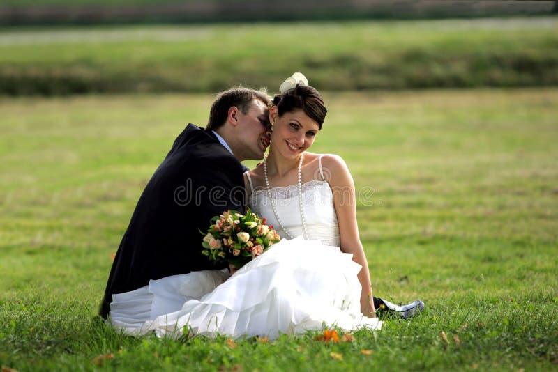 Glückliche Jungvermähltenpaare stockbild