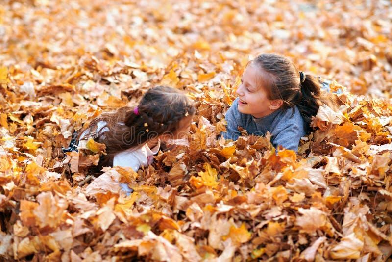 Glückliche Kinder, die in gelben Blättern spielen, posieren, lächeln und Spaß im Herbststädtpark haben. Hellgelbe Bäume und stockfoto