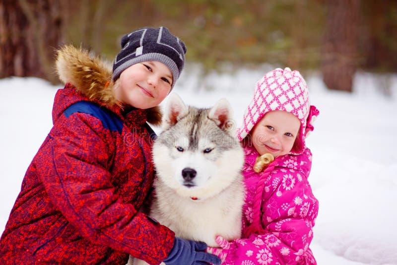 Glückliche Kinder, die hasky Hund im Winterpark umfassen lizenzfreies stockfoto