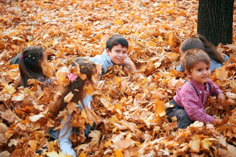 Glückliche Kinder-Gruppe spielen in der Menge gelber Blätter, posieren, lächeln und Spaß im Herbststädtpark. Hellgelbe Bäume lizenzfreies stockfoto