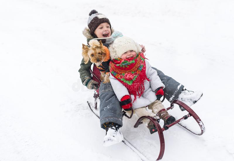 Glückliche Kinder mit kleinem Hund fahren zusammen auf einen Schlitten in einer Schneewehe an einem klaren Wintertag lizenzfreies stockbild