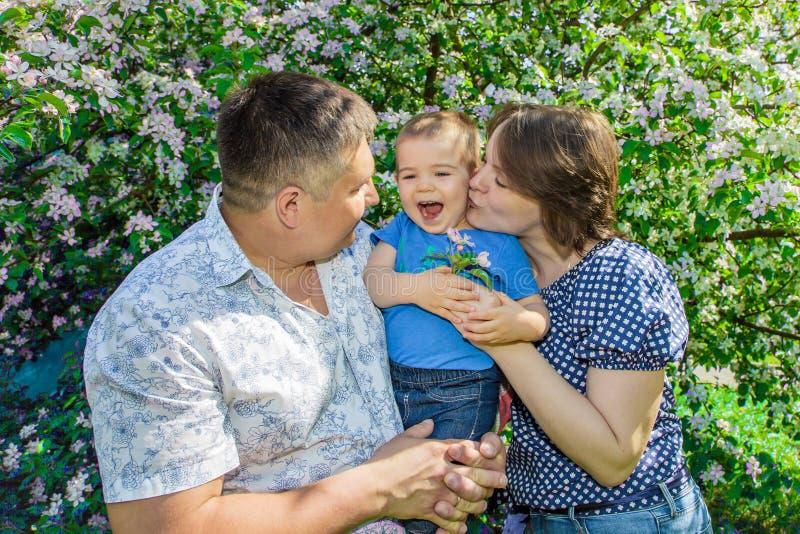 Glückliche Mutter und Vati, die Baby im Park am sonnigen Tag des Sommers umarmt lizenzfreie stockfotografie