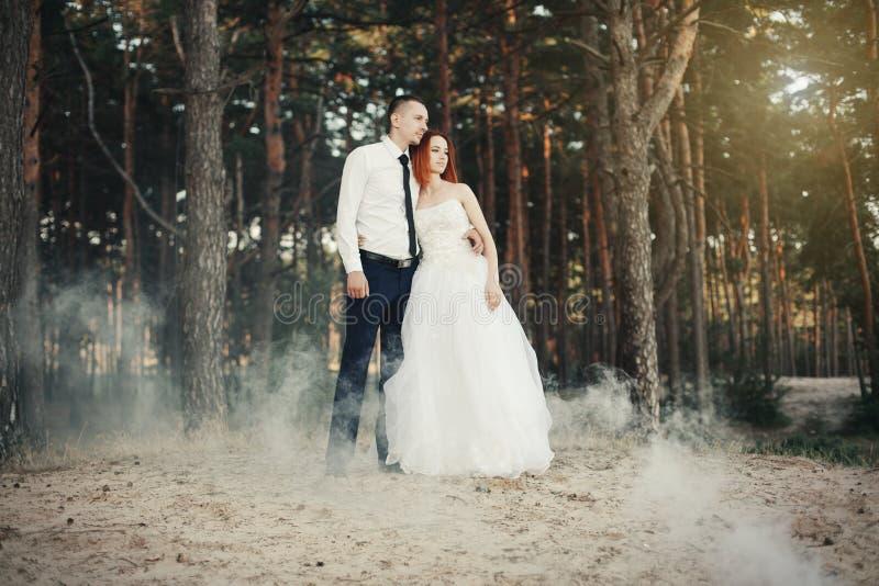 Glückliche Paare in der Weinlesekleidung Der Bräutigam umfasst die Braut, liebevolles Paar in einer Kiefernwaldfrau, die zart den lizenzfreies stockfoto