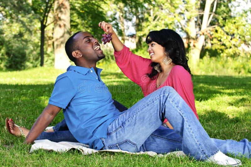 Glückliche Paare, die Picknick im Park haben lizenzfreies stockbild