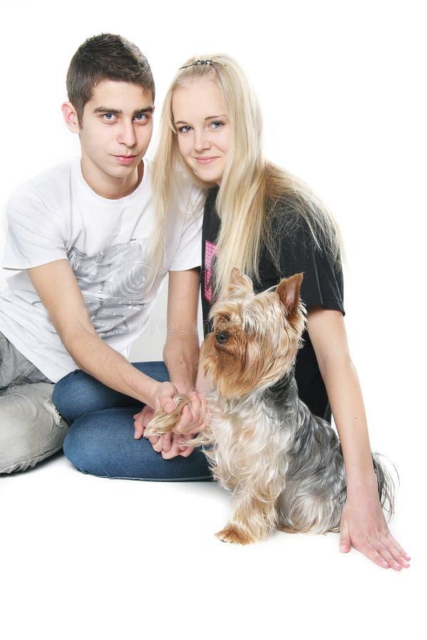 Glückliche Paare mit Yorkshire-Terrier über Weiß stockfotos