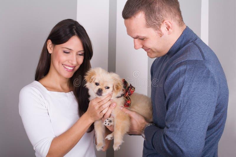 Glückliche Paare und ein Hund stockbilder