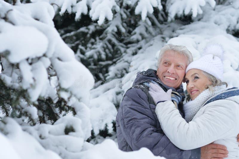 Glückliche reife Paare, die draußen aufwerfen stockfotografie
