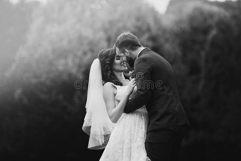 Glückliche, sinnliche Jungvermähltenpaare, die auf dem Parkgebiet lächeln und umarmen lizenzfreies stockfoto