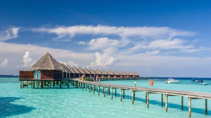 Glückliche Tage in maledivischem stockfotografie