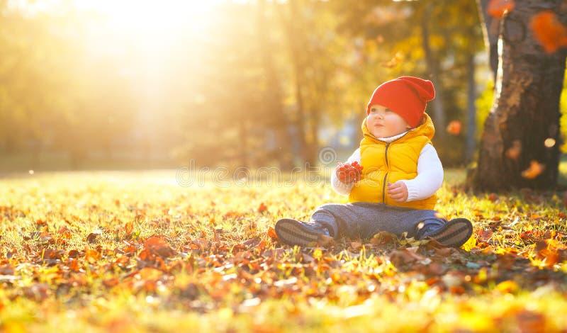 Glücklicher Babykinderjunge auf Herbstweg stockfoto