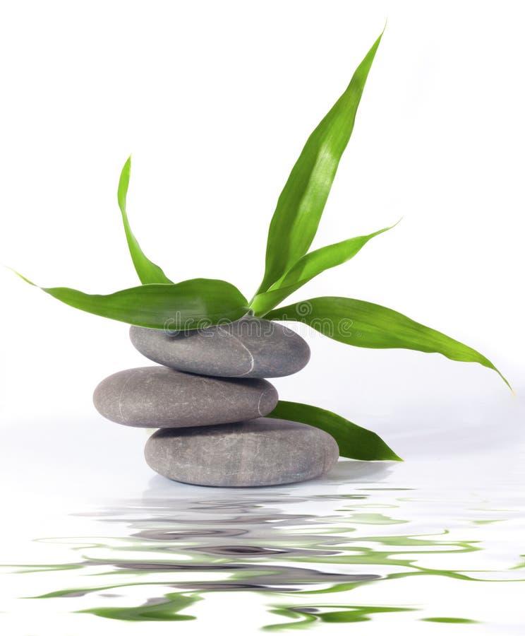 Glücklicher Bambus und Steine lizenzfreies stockfoto