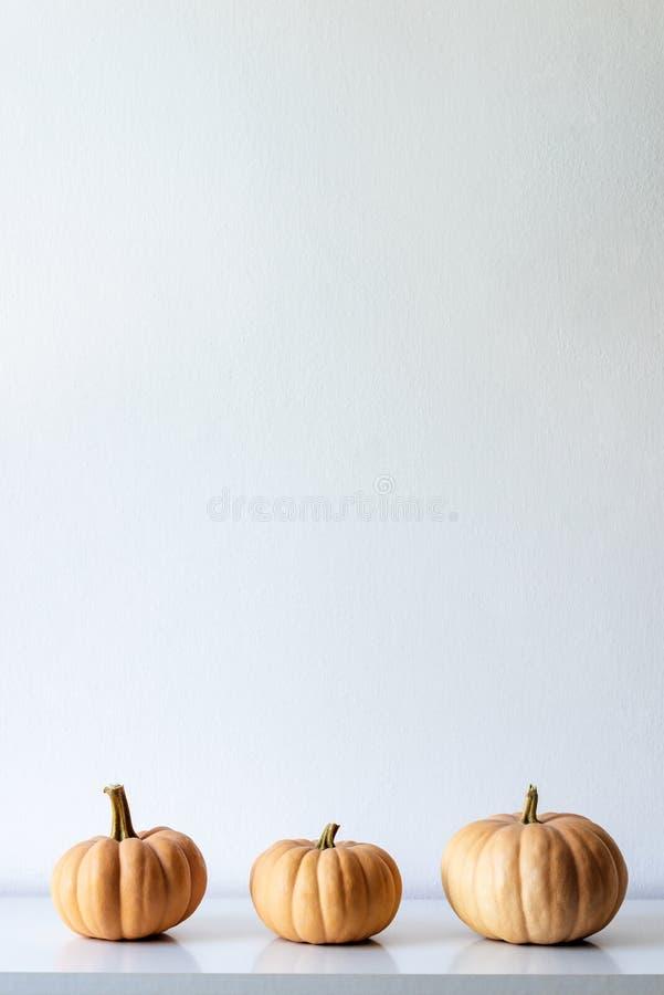 Glücklicher Danksagungs-Hintergrund Drei Kürbise auf weißem Regal gegen weiße Wand Moderne minimale Raumdekoration stockbilder