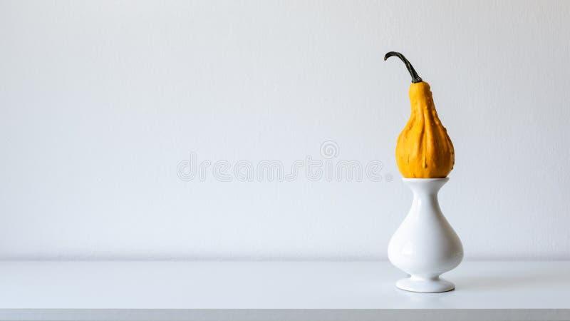 Glücklicher Danksagungs-Hintergrund Kürbis auf weißem Regal gegen weiße Wand Moderne minimale Saisonraumdekoration lizenzfreie stockfotos