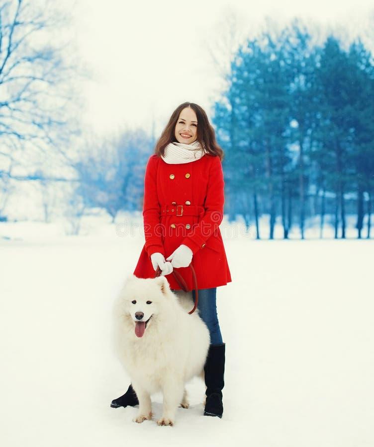 Glücklicher Eigentümer der jungen Frau mit dem weißen Samoyedhund, der in Winter geht stockbild