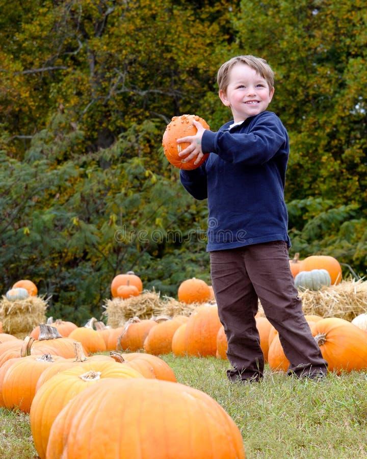 Glücklicher junger Junge, der einen Kürbis auswählt stockfotografie