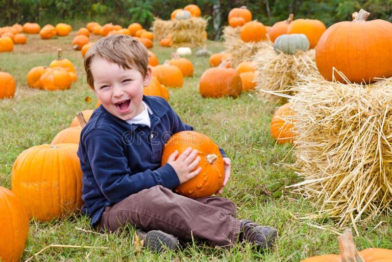 Glücklicher junger Junge, der einen Kürbis auswählt lizenzfreie stockbilder