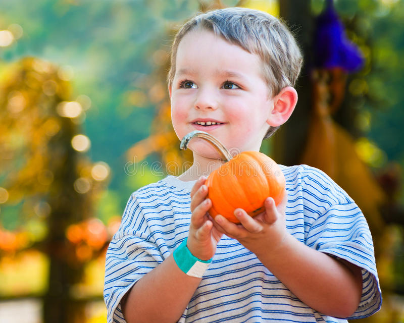 Glücklicher junger Junge, der einen Kürbis auswählt stockfoto