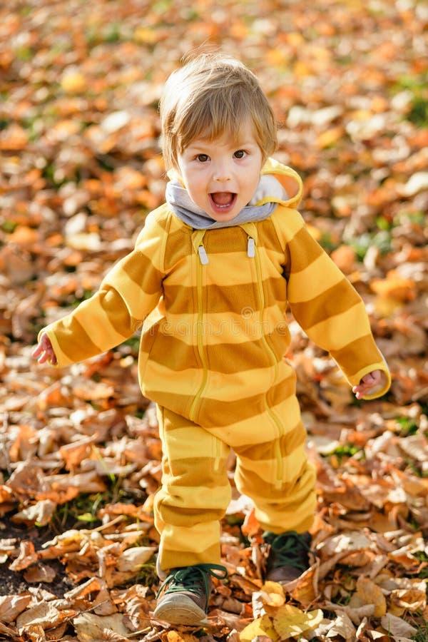 Glücklicher kleiner Junge, der im Herbst auf dem Naturweg am Park lacht und spielt lizenzfreies stockfoto