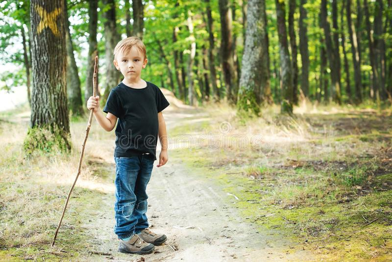 Glücklicher kleiner Junge, der im Wald, Sommerferien wandert stockbild