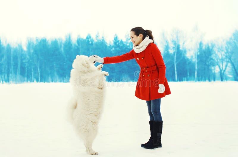 Glücklicher lächelnder Eigentümer der jungen Frau mit dem weißen Samoyedhund, der das Gehen in Winter spielt stockbilder