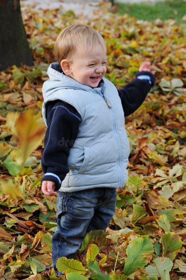 Glücklicher lachender kleiner Junge stockfotos