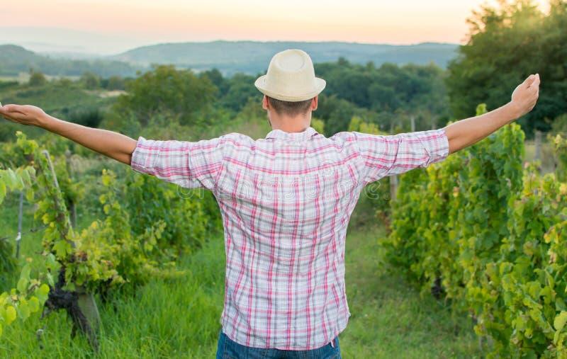 Glücklicher Landwirt, der unter den Traubenreihen sich entspannt lizenzfreies stockfoto